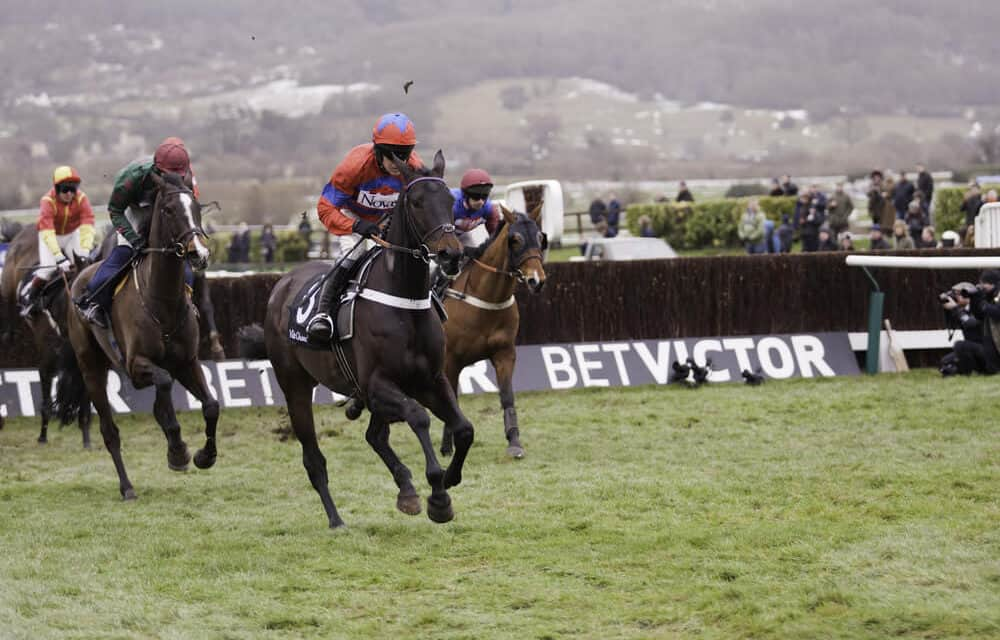 Early Insights for the Festival – Cheltenham Trials Summary
