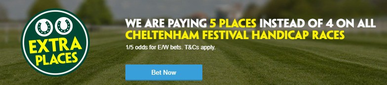 Paddy Power Horse Racing - Cheltenham Festival Betting Extra Places Promo