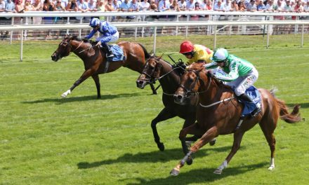 2000 Guineas Market Contracts Further After Skardu Win