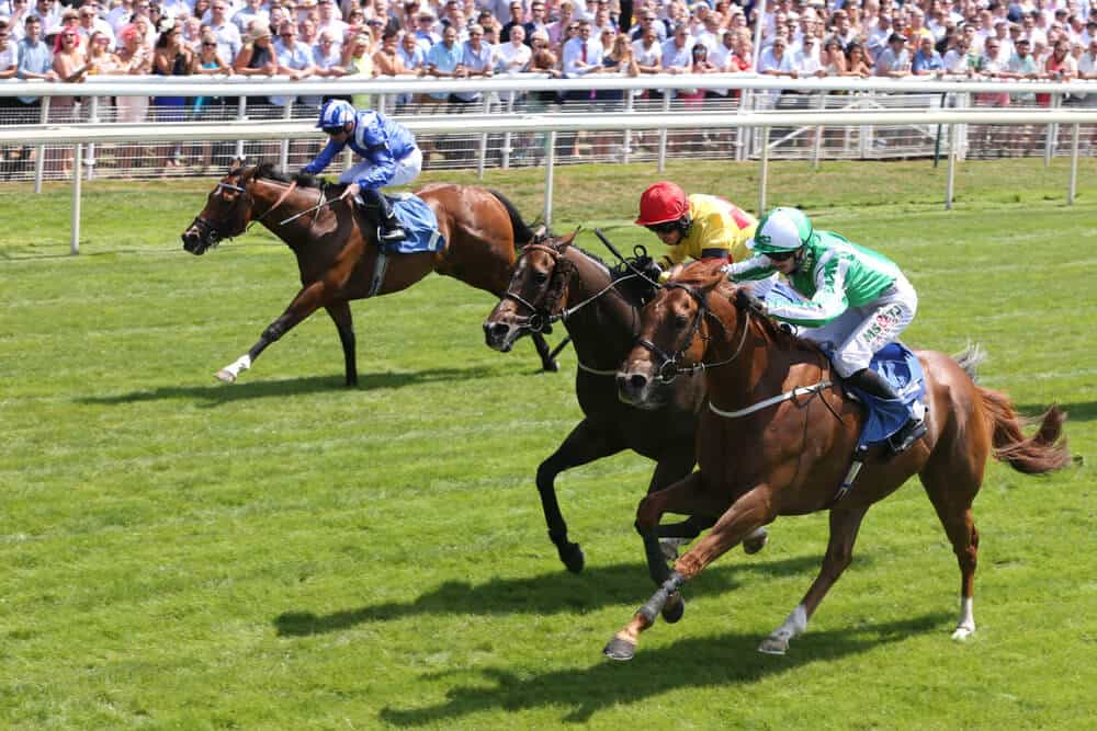 Just One Winning Favourite on Ascot's First Day as Weather Hits