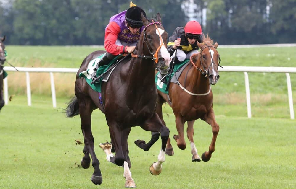 Tiger Roll Secures Place as Racing Legend