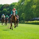Gosden Stars to Be Kept Busy
