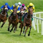 Persian King Enhances Reputation with Poulains Win