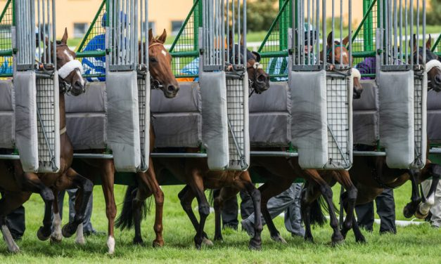 Runners Confirmed for Opening Days at Ascot