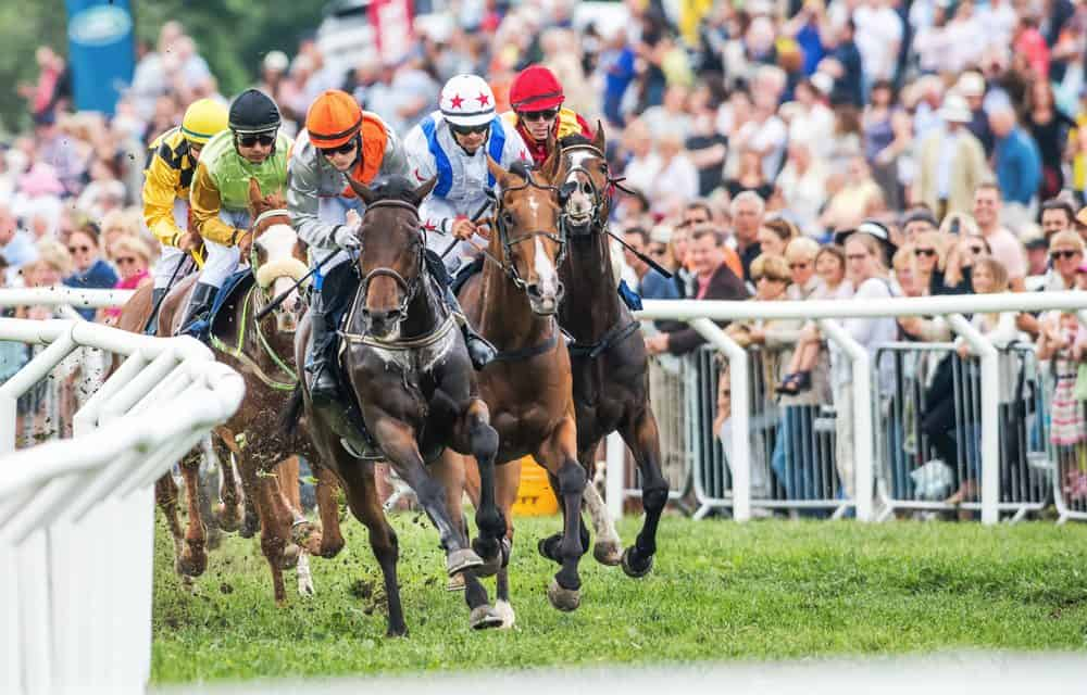12 Declared for July Cup Spectacular