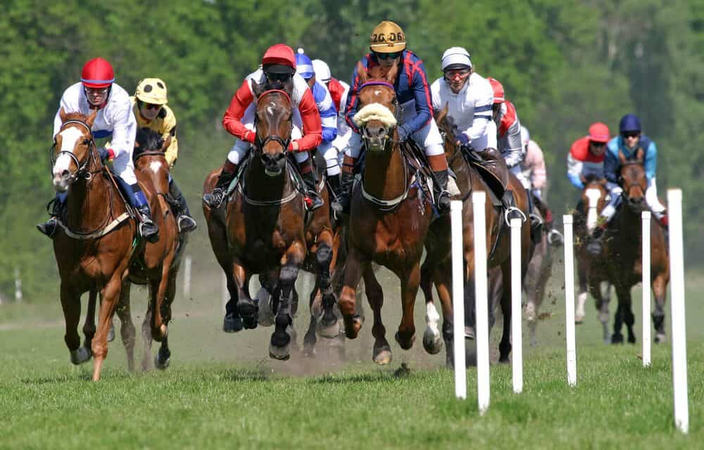 The BHA Could Punish Trainers for Poor Treatment of Staff