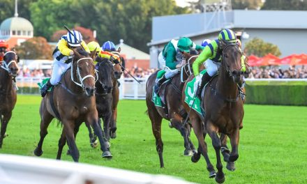 Juddmonte International Shaping up to Be a Cracker