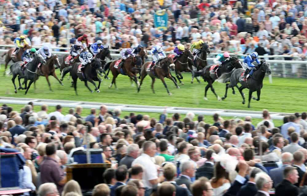 York Entries Make for Remarkable Ebor Meeting