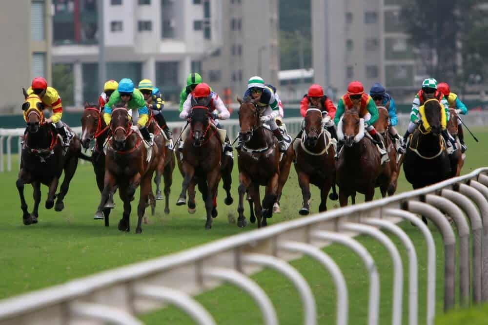 Top Action: What to Watch Out for This Weekend at Ayr