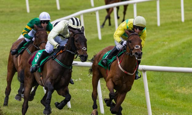 Arc Field Trimmed to 16