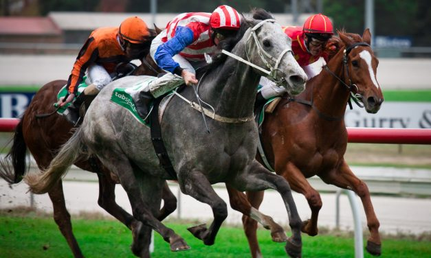 Vow And Declare Scores in Dramatic Melbourne Cup